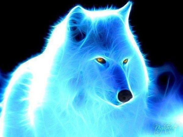 Alpha et Omega - Tome 1 : Le cri du loup de Patricia Briggs 4342289d
