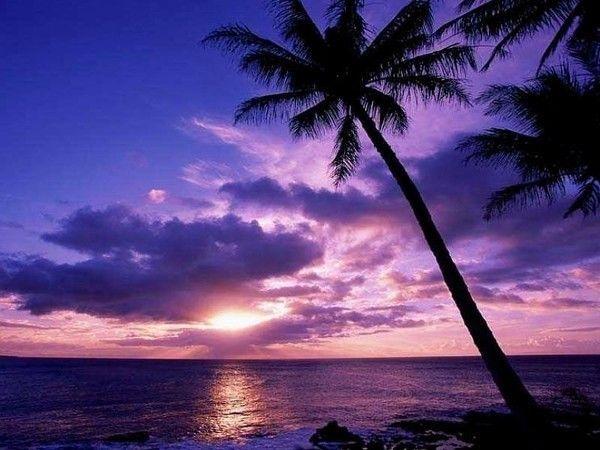 Images coucher de soleil F2079376